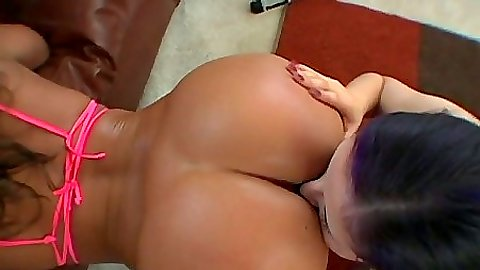 Top rated lesbian porn sites